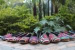 Kuna Kicks